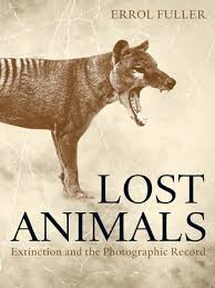 Lost animals